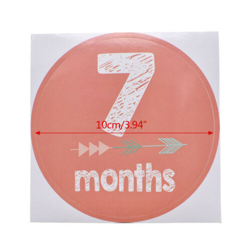 New Baby Pregnant Women Monthly Photograph Stickers Month 1-12 Milestone Sticker 9