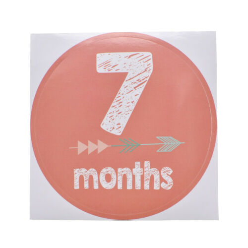 New Baby Pregnant Women Monthly Photograph Stickers Month 1-12 Milestone Sticker 5