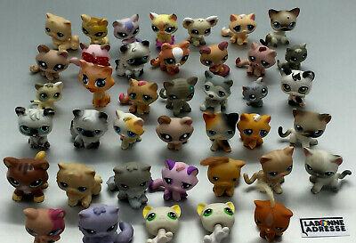 Lps Littelest Pet Shop Chat Cat 40 Ex. Au Choix Choose Petshop Little Pet Shop 2