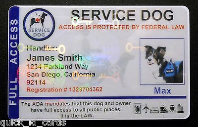 2be10104f185 ... Holographic Service Dog Id Card For Service Animal Ada Rated 8 Bh 3