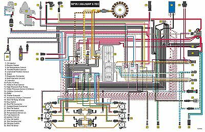 evinrude etec wiring harness diagram etec wiring diagram #6