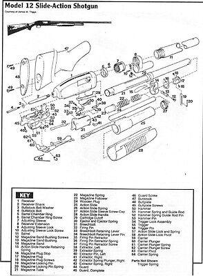 Winchester Model 42 Magazine Plug Screw 1 Screw Win Part # 5842