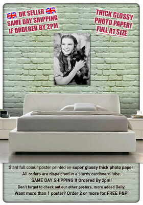 "Judy Garland and Toto Wizard of Oz LARGE 23/""x33/"" A1 Size Poster **UK SELLER**"
