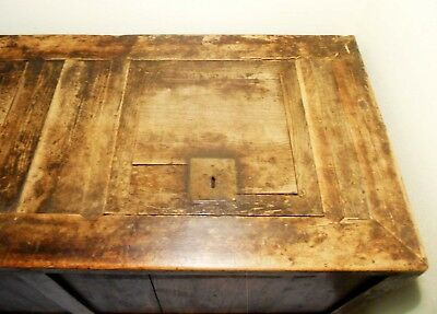 Antique Chinese Coffee Table/Treasure Trunk (2858), Circa 1800-1849 6