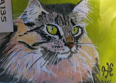 """A669    Original Acrylic Aceo Painting By Ljh        """"Joey""""  Cat  Kitten 9"""