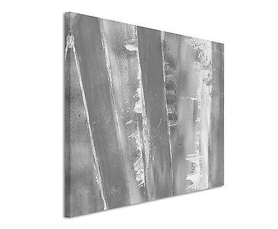 Leinwandbild abstrakt schwarz grau weiß Paul Sinus Abstrakt/_827/_120x80cm