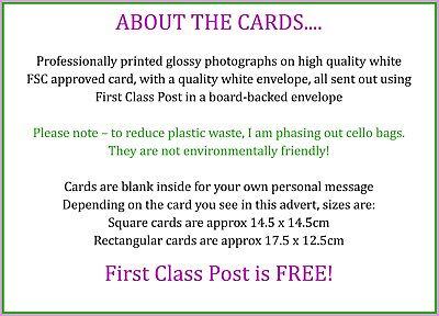 Greetings Card Birthday / Blank Notelet - Canal Narrow Boat Boating Holiday 6