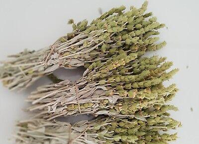 Griechischer Bergtee Sideritis Scardica Bio | 180g | Ernte 19 | Premium Qualität 3