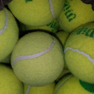 5 Dead Used Tennis Balls Dog Toys Fetch Catch Walkers Garage Corner Safety 8