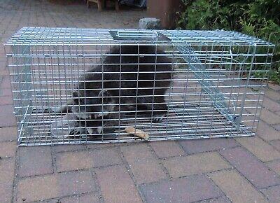 Marderfalle Lebendfalle 79cm Waschbärfalle Falle Fuchs Katzen Kaninchen XXL Groß 2