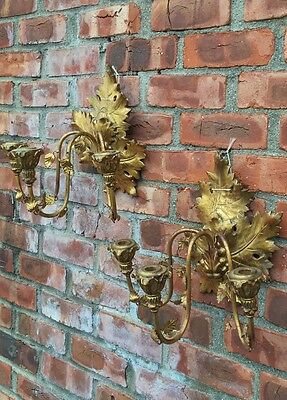 Antique C1900 Gold Gilded Carved Wood & Metal Italian Leaf Form Wall Sconces 2