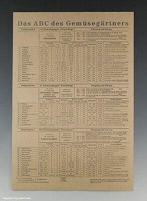 Plakat Das ABC des Gemüsegärtners um 1946