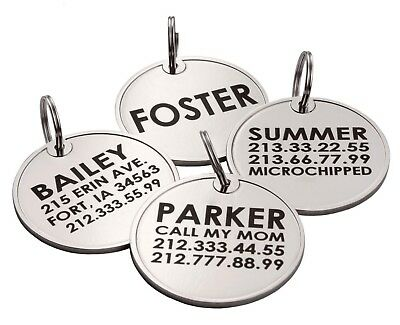 Personalized Dog Tags Pet ID Name Custom Engraved Cat Puppy Tag Bone Paw S L 2