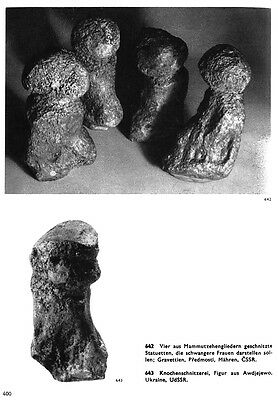 Serie of 6 paleolithic Venuses  - casts of resin 12