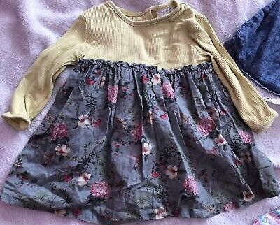 Beautiful Bundle Of Baby Girls Dresses Age 6-9 Months Inc. Next, F&F, George 3
