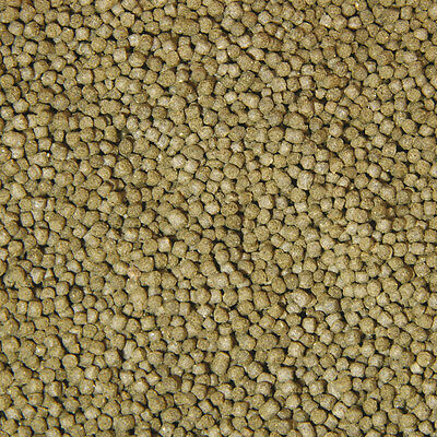 JBL NovoPrawn Futterperlen für Garnelen von 100 ml - 250 ml 3