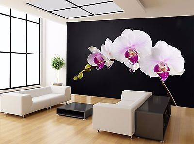 VIOLET ORCHID Photo Wallpaper Wall Mural FLOWERS 360x254cm HUGE!