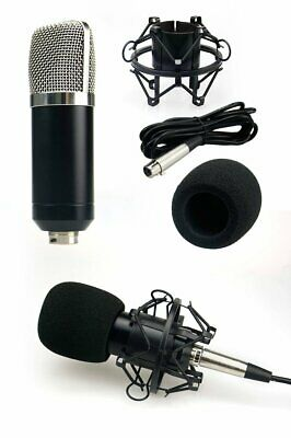Professional Studio Broadcasting Recording Kit Microphone+Pop Filter+Holder 4