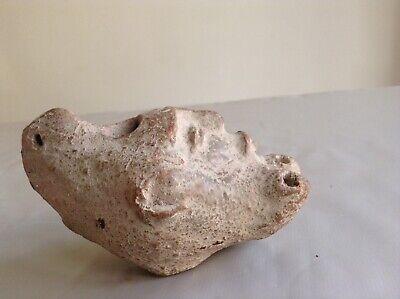Rare Ancient Roman Terracotta Oil Lamp Satyr Head 1st Century A.D Collectable 5