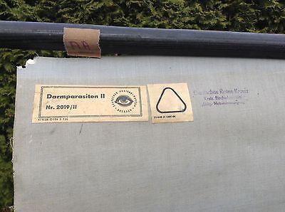 Alte Rollkarte Lehrtafel Schulwandkarte Mensch Darm Parasiten Loft Deko