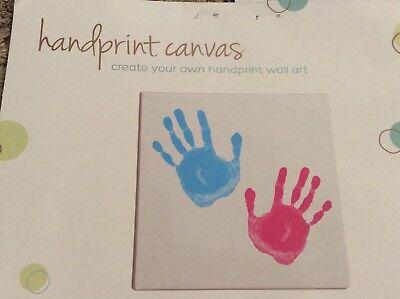 Tiny Ideas Handprint Paints Pink Blue Paints No Canvas
