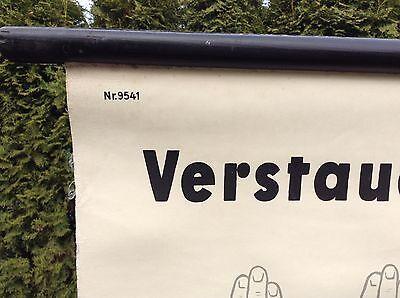 Alte Rollkarte Lehrtafel Schulwandkarte Mensch Verrenkung Verstauchung Arzt Deko 3