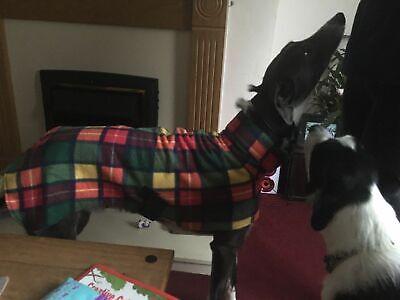 """dog Snood jumper fleece house coat italian whippet lurcher greyhound 30""""Buchanan 4"""