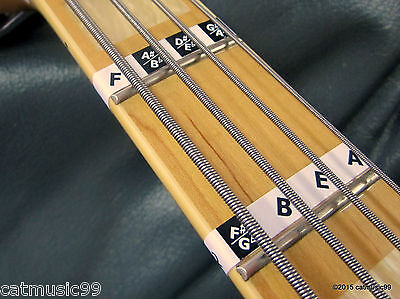 1 of 8 Bass Guitar Fretboard Note Labels Fret Stickers + Online Lessons &  Learning Aids