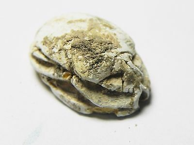 Zurqieh -Af650- Ancient Egypt ,2Nd Intermediate Stone Scarab. 1782 - 1570 B.c 2