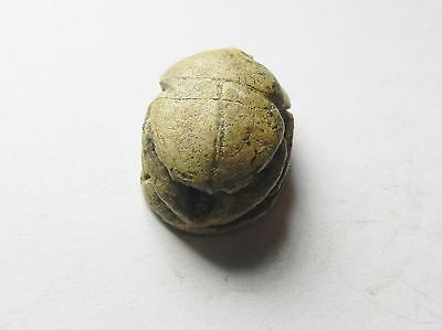 Zurqieh - Ancient Egypt - New Kingdom . Steatite Scarab , Beautifull .1400 B.c 3