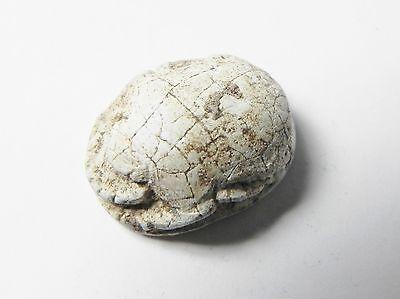 Zurqieh -Af341- Ancient Egypt , New Kingdom Stone Scarab. 1400 B.c 2