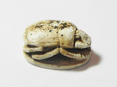 Zurqieh -Q327- Ancient Egypt , Equisite Steatite Scarab. 1400 B.c 2