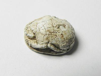 Zurqieh -Af341- Ancient Egypt , New Kingdom Stone Scarab. 1400 B.c 3