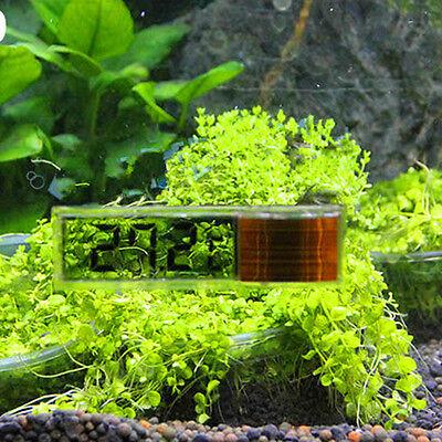 Lcd 3D Digital Electronic Measurement Fish Tank Aquarium Thermometer Random 3
