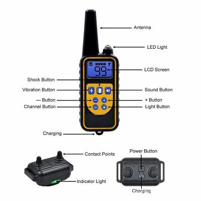 Waterproof Dog Training Electric Collar Rechargeable Remote Control 875 Yards 2