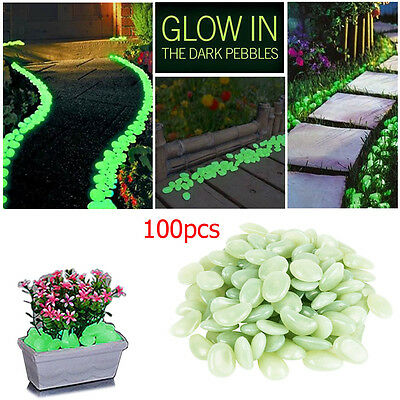 Glow In Dark Colour Pebbles Stones Luminous Illuminous Garden Outdoor Aquarium 2