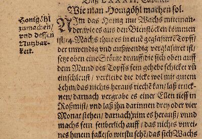 KORALLEN Öl  Apotheker Medizin Original Doppelblatt 1620 Arznei Heilmittel Arzt 7