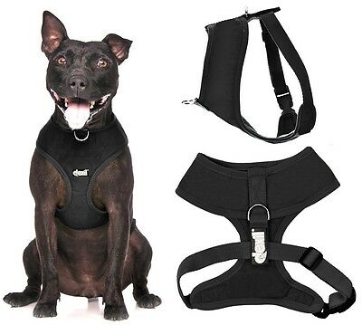 Padded Waterproof Adjustable Pet Puppy Dogs Non Pull Soft Vest Harness or Sets 6