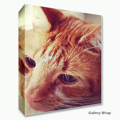 Large Personalised Framed Canvas Print Photo Image Picture - Ready to hang 2