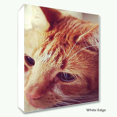 Large Personalised Framed Canvas Print Photo Image Picture - Ready to hang 5