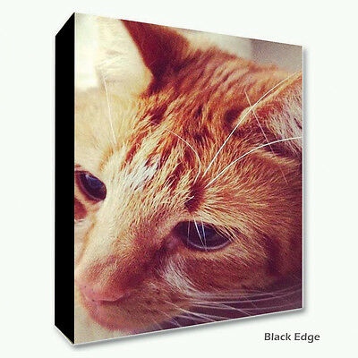 Large Personalised Framed Canvas Print Photo Image Picture - Ready to hang 4