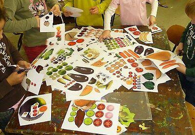 18 Arcimboldo Ideen Kunst Fur Kinder Kunst 14