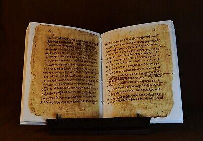 Papyrus 66 Manuscript, Facsimile 8