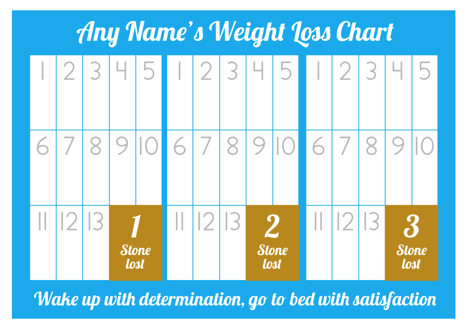 Personalised weight loss chart 3 stone laminated with 1 sheet of 1 of 5free shipping personalised weight loss chart 3 stone laminated with 1 sheet of stickers nvjuhfo Image collections