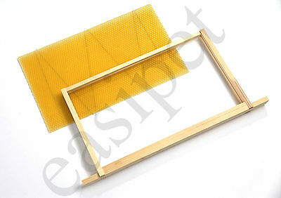 National Beehive Wired Wax Foundation Sheets and Frames Beekeeping Easibee 3