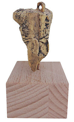 Venus from Hohle Fels cave (Germany) - cast 3