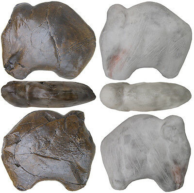 Prehistoric Art - Collection of 12 different mammoths – casts with pedestals