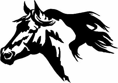 horses head horse trailer truck window rv c er decal sticker 8x11 2015 2 Horse Trailers 1 of 2 horses head horse trailer truck window rv c er decal sticker 8x11 5