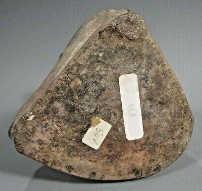 Pre Columbian Peru North Coast Moche Mochica Snarling Fox Vessel ca. 500 AD 8
