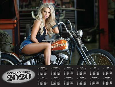 2020 V-TWIN VIXENS DELUXE WALL CALENDAR Dream Girls Harley Motorcycle Davidson 3
